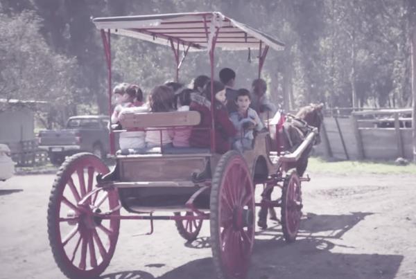 Paseos en carruajes. Rancho San Luis, Pelequén, Chile.